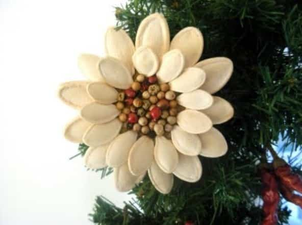 flor navidad calabaza 7
