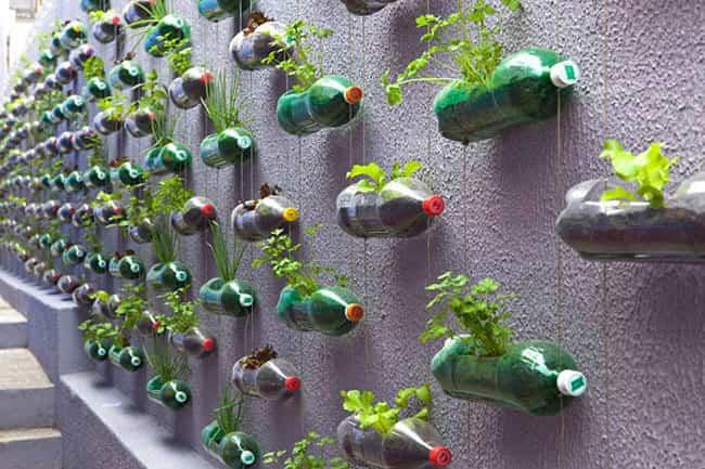 reciclaje botellas de plastico 3