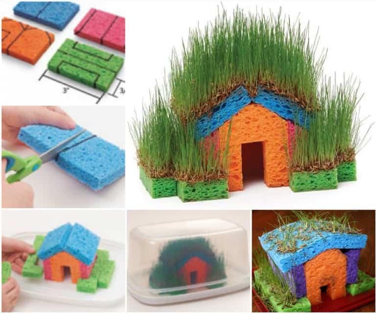 casa con esponja