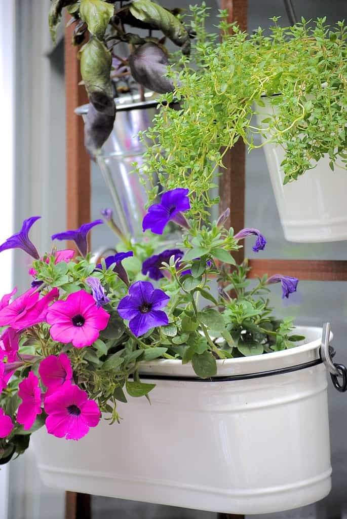 Cómo conseguir tu propio jardín vertical