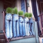 pantalones vaqueros rellenos con tierra y plantas